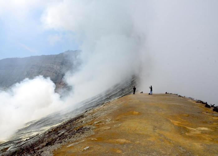 1692650 orThe volcanoes aThe volcanoes and forests of Indonesiand forests of Indonesiaig