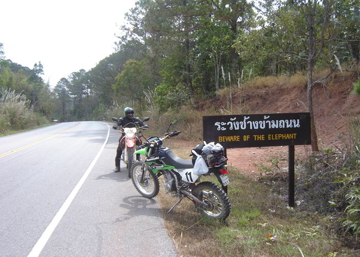 forest biking in Phu Rua | Thailand