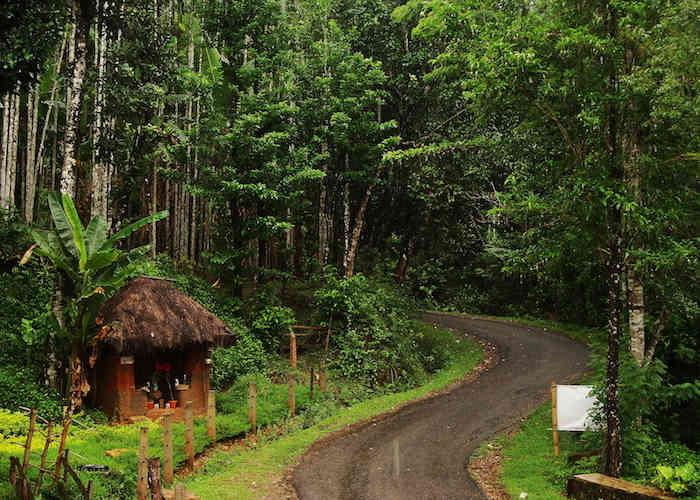Roads of Agumbe
