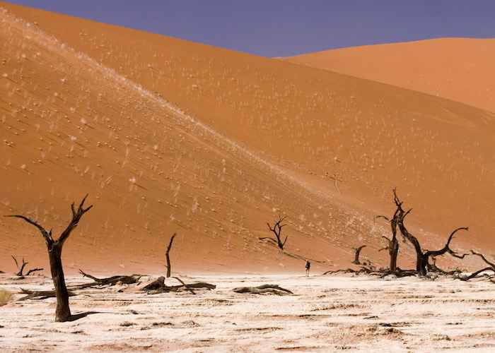 Dead Vlei Sossusvlei Namib Desert Namibia Luca Galuzzi