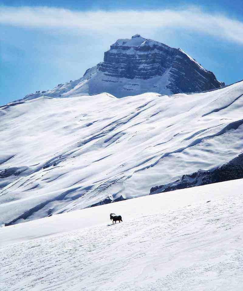 White Spiti Valley